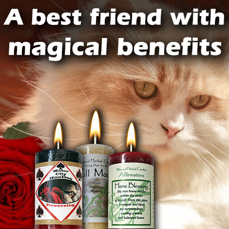 CMO A Best Friends with magical benefits